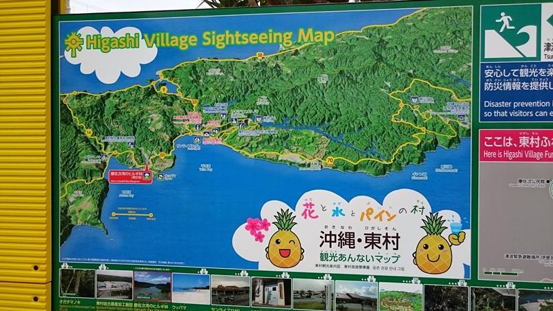 沖縄北部東村でパイナップルにしゃぶりつくドライブの旅