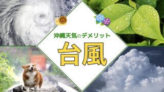 【最新版】沖縄のベストシーズンはいつ?沖縄の天気で気になる台風、梅雨を過去データから徹底調査