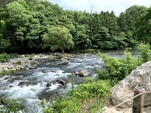 狩野川上流