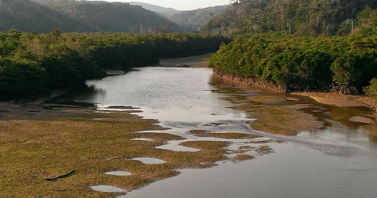 慶佐次ふれあいヒルギ公園干潮