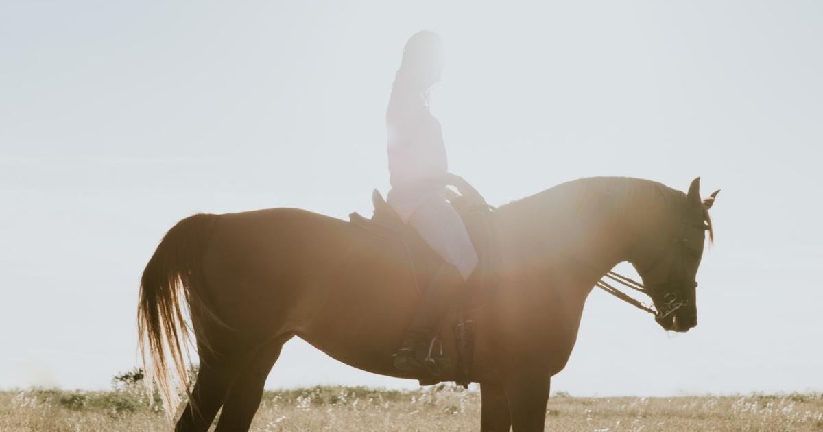 「首里の馬」感想・レビュー