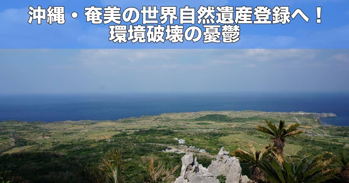 沖縄・奄美の世界自然遺産登録へ!環境破壊の憂鬱